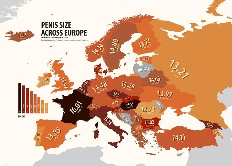 Среднестатистический член у европейцев