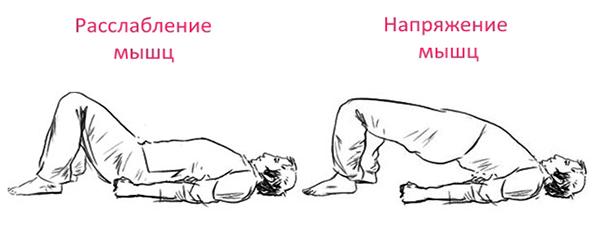 комплекс упражнений кегеля