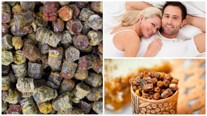 пчелиная перга польза и вред для мужчин